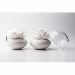 Контейнер для хранения ватных палочек lotus белый, Qualy