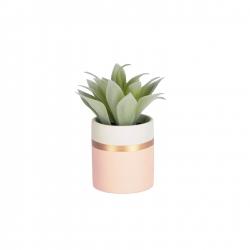 Flower Zelena Агава в розовом керамическом горшке