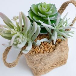 Flower 3 искусственных суккулента в льняной сумке