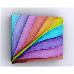 Картина Leaf Rainbow