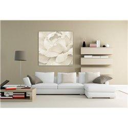 Картина на холсте «Роза Беж»