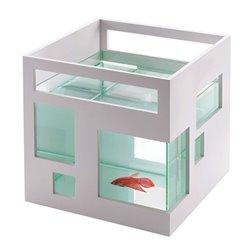 Аквариум Fishhotel, Umbra