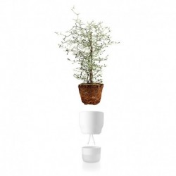 Горшок для растений с функцией самополива 13 см белый, Eva Solo