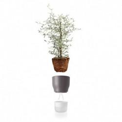 Горшок для растений с функцией самополива 13 см серый, Eva Solo