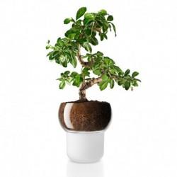 Горшок для орхидеи с функцией самополива 13 см, Eva Solo