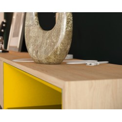Модуль-D желтый, дуб, BraginDesign