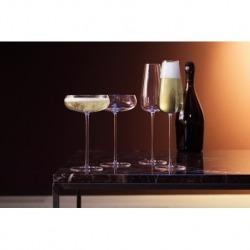Набор из 2 бокалов-креманок Wine culture 320 мл, LSA