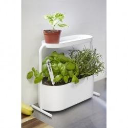 Кашпо для комнатных растений Giardino белое, Umbra