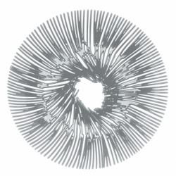 Блюдо для фруктов anemone, серое, Koziol
