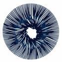 Блюдо для фруктов anemone, синее, Koziol